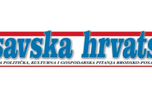 Posavska Hrvatska – 3.1.2019.