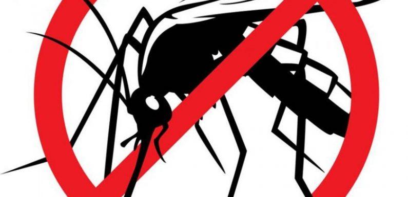 Obavijest o dezinsekciji komaraca
