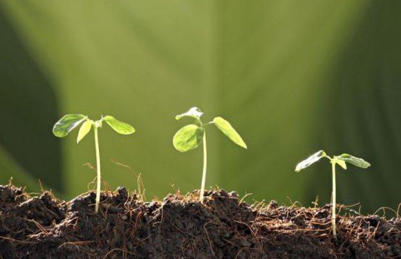 Kontrola plodnosti tla na poljoprivrednim gospodarstvima u 2021. godini